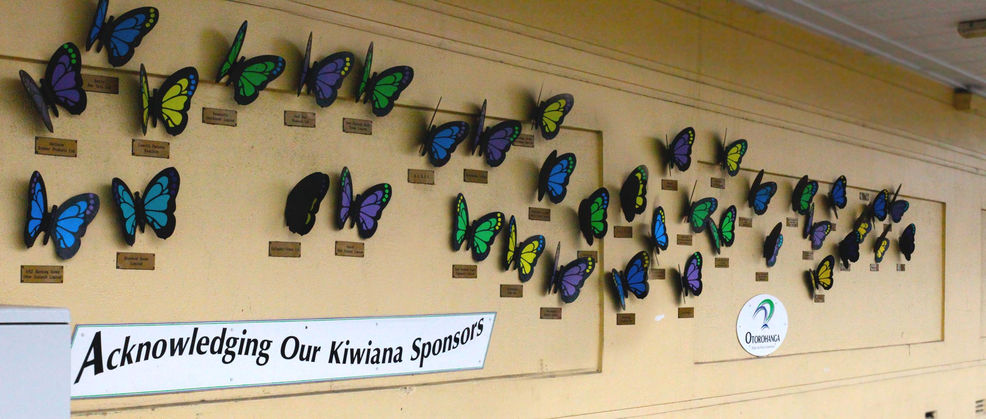 SEE OUR BUTTERFLY WALL